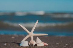 La opinión del paisaje marino fotos de archivo libres de regalías