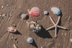 La opinión del paisaje marino imagenes de archivo