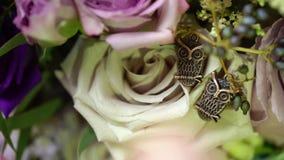 La opinión del primer a la broche del ` s de las mujeres de dos búhos en rosas florece almacen de metraje de vídeo