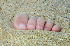 La opinión del primer de pequeños pies con los dedos del pie en la arena se encendió por la luz de la puesta del sol Imagenes de archivo