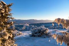 La opinión sobre la montaña congelada y el bosque cubierto en puesta del sol encienden throu Foto de archivo libre de regalías