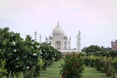 La opinión Taj Mahal de Mehtab Bagh cultiva un huerto fotografía de archivo