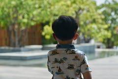 La opinión trasera el muchacho está mirando hacia fuera considera la vista de la decoración de la charca imagenes de archivo