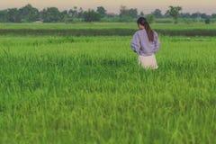 La opinión trasera la mujer joven toma una foto por smartphone en el arroz fotografía de archivo libre de regalías