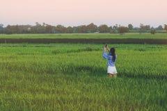 La opinión trasera la mujer joven toma una foto por smartphone en el arroz fotografía de archivo