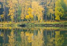 La orilla del lago en un día brumoso tranquilo del otoño La visión desde el agua Fotografía de archivo