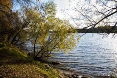 La orilla del río Fotografía de archivo libre de regalías