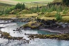 La orilla del r?o con las cuestas y los ?rboles verdes en ella fotografía de archivo libre de regalías