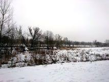 La orilla del río en una mañana fría en el invierno Imagen de archivo libre de regalías
