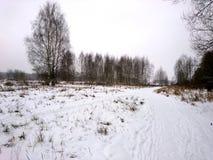 La orilla del río en una mañana fría en el invierno Fotografía de archivo