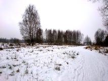 La orilla del río en una mañana fría en el invierno Fotos de archivo libres de regalías