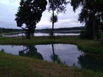 La orilla hermosa del lago y de la charca fotos de archivo libres de regalías