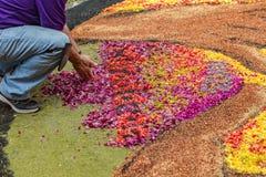 La Orotava Tenerife, Spanien - Juni 27, 2019 Härliga blommamattor i La Orotava under Corpus Christi Berömd religiös händelse fotografering för bildbyråer
