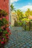 La Orotava terrasssikt Royaltyfri Fotografi
