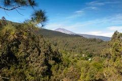 Free La Orotava Valley Of Teneriffe Royalty Free Stock Image - 31834276