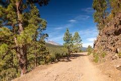 La Orotava Valley of Teneriffe Stock Photography