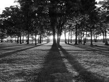 La oscuridad del amanecer Foto de archivo