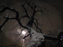 La oscuridad del invierno imagen de archivo
