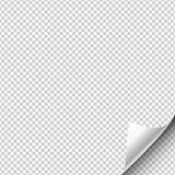 La página de papel cuelga con para arriba envuelta una esquina Ilustración del vector stock de ilustración