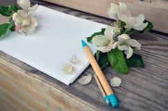 La página en blanco de un cuaderno y de una manzana florece Foto de archivo libre de regalías