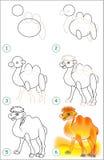 La página muestra cómo aprender paso a paso dibujar un camello Imagenes de archivo