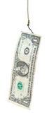 La pêche avec le billet de banque du 1 dollar leurrent sur l'hameçon Photo stock
