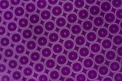 La púrpura circunda el fondo Imagen de archivo libre de regalías