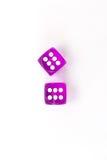 La púrpura coloreó dados aislados de los pares Imágenes de archivo libres de regalías