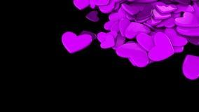 La púrpura del grupo dispersó corazones en un fondo negro Fondo del día del ` s de la tarjeta del día de San Valentín Imagen de archivo