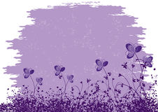La púrpura florece el fondo Fotos de archivo libres de regalías