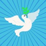 La pace bianca si è tuffata con ramo di ulivo per il manifesto internazionale del giorno di pace sul fondo del raggio Fotografia Stock Libera da Diritti