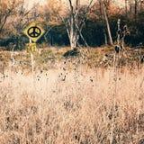 La pace firma dentro il prato Fotografie Stock