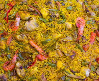La Paella de riz espagnol s'est mélangée de la viande et des fruits de mer Photo libre de droits