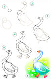 Cours de dessin comment dessiner un oiseau illustration de - Dessiner une oie ...