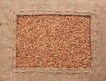La pagina fatta di tela da imballaggio con la linea si trova sui grani del grano saraceno Fotografia Stock Libera da Diritti