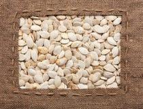 La pagina fatta di tela da imballaggio con la linea si trova sui semi di zucca Immagini Stock