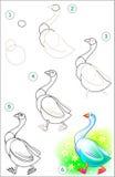 La pagina mostra come imparare per gradi disegnare un'oca illustrazione di stock