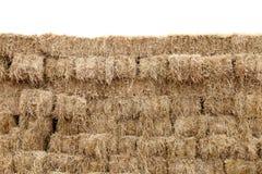 La paglia, parete del cubo del blocchetto della paglia, paglia asciutta, fieno del mucchio di fila ha isolato il fondo bianco, pa Fotografia Stock