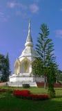 La pagoda Foto de archivo libre de regalías