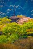La pagoda al tempio buddista di Kiyomizu-Dera fotografia stock libera da diritti