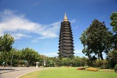 La pagoda chinoise la plus grande de temple bouddhiste Photos libres de droits