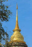 La pagoda de oro Foto de archivo