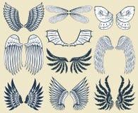 La paix naturelle de plume d'isolement par ailes de pignon d'oiseau de vol animal de liberté conçoivent l'illustration de vecteur Photos stock