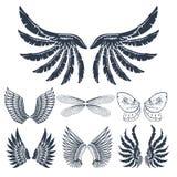 La paix naturelle de plume d'isolement par ailes de pignon d'oiseau de vol animal de liberté conçoivent l'illustration de vecteur Images libres de droits