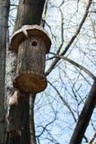 La pajarera en el árbol Imágenes de archivo libres de regalías