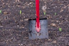 La pala sta nella terra, nel campo Fotografia Stock Libera da Diritti