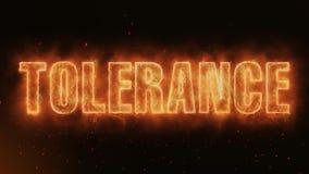 La palabra de la tolerancia que quema el fuego realista flamea el lazo continuo de las chispas inconsútil ilustración del vector