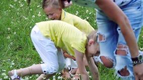 La palla del gioco di bambini, mette sull'erba, fra le margherite, porta via l'uno dall'altro la palla Si divertono Estate archivi video
