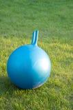 La palla di forma fisica mette su un'erba Fotografia Stock Libera da Diritti