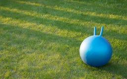 La palla di forma fisica mette su un'erba Immagini Stock